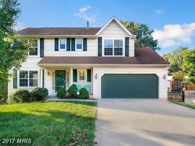 Capitol Heights Single Family Home For Sale: 7206 Willow Hill Drive