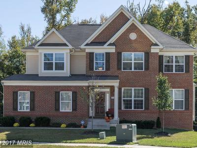 Accokeek Single Family Home For Sale: 901 Horse Collar Road