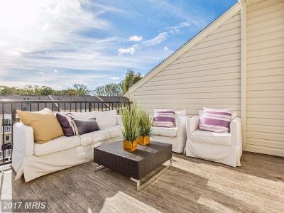 Glenn Dale Single Family Home For Sale: 12200 Daisy Lane