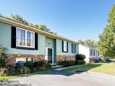Hyattsville Single Family Home For Sale: 6617 Greenvale Parkway