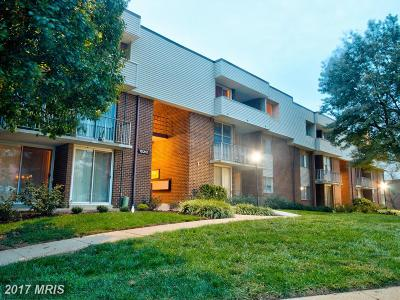 Upper Marlboro Rental For Rent: 10210 Prince Place #6-304