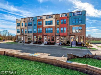 Hyattsville Townhouse For Sale: 3509 Gazette Street #509B