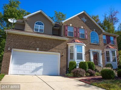 Accokeek Single Family Home For Sale: 1219 Farmington Avenue