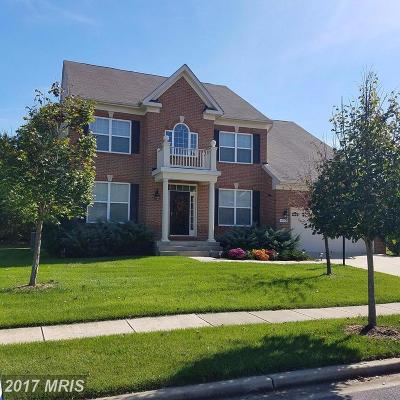 Accokeek Single Family Home For Sale: 17306 Madrillon Way