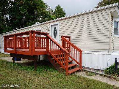 Capitol Heights Mobile/Manufactured For Sale: 9402 Beech Park Street