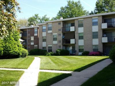 Suitland Rental For Rent: 3827 St Barnabas Road #101
