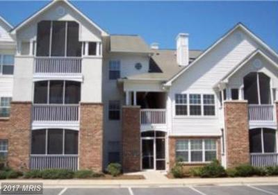 Greenbelt Rental For Rent: 6702 Lake Park Drive #101