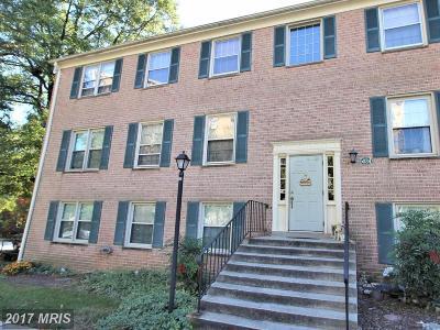 College Park Rental For Rent: 6034 Westchester Park Drive #T