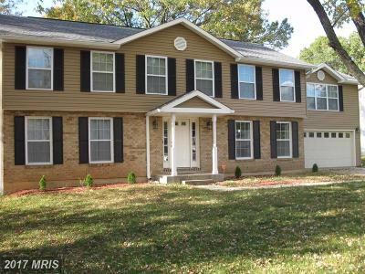 Fort Washington Single Family Home For Sale: 8415 Fort Foote Road