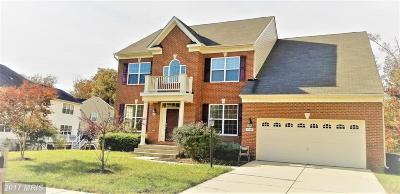 Accokeek Single Family Home For Sale: 17109 Madrillon Way
