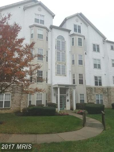 Bowie Rental For Rent: 15606 Everglade Lane #C-002