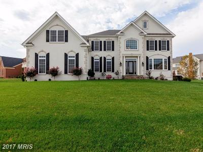 Accokeek, Clinton, Fort Washington, Upper Marlboro Single Family Home For Sale: 4501 Welsh Court