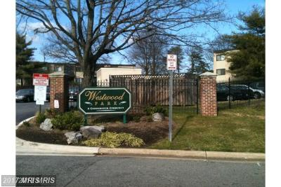 District Heights Rental For Rent: 6301 Hil Mar Drive #4-4
