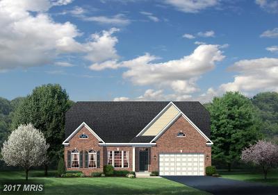 Upper Marlboro Single Family Home For Sale: 10216 Dressage Drive