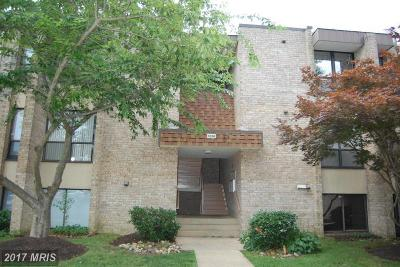Temple Hills Rental For Rent: 3336 Huntley Square Drive #T-1