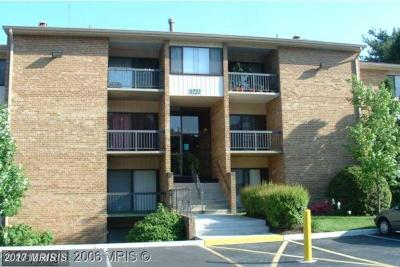Beltsville Condo For Sale: 11232 Cherry Hill Road #170