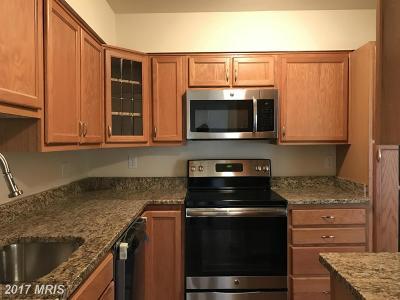 Upper Marlboro Rental For Rent: 10137 Prince Place #204-6B
