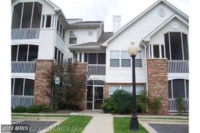 Greenbelt Condo For Sale: 6502 Lake Park Drive #3C