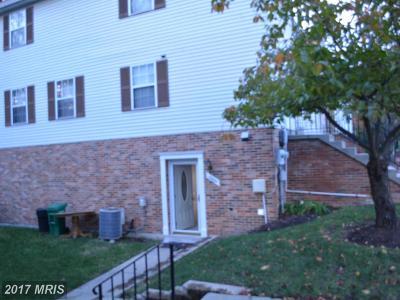Laurel Rental For Rent: 15024 Cherrywood Drive #4N