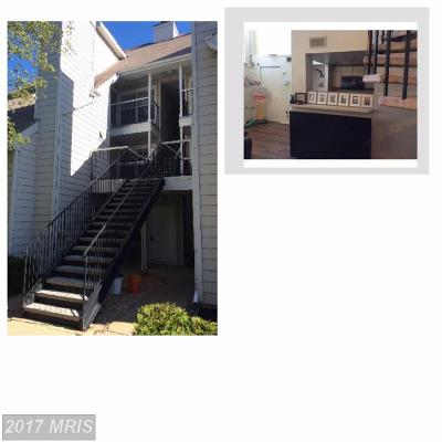 Bowie Rental For Rent: 15759 Easthaven Court #405