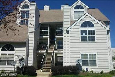 Laurel Rental For Rent: 14024 Vista Drive #65