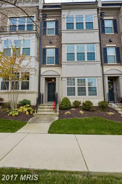 Oxon Hill Single Family Home For Sale: 516 Overlook Park Drive #35