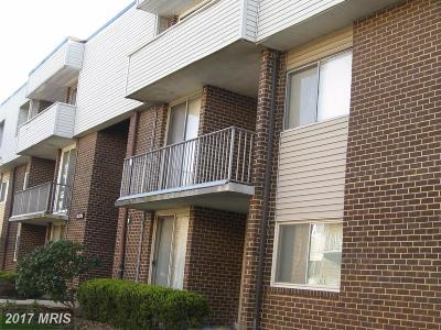 Upper Marlboro Rental For Rent: 10206 Prince Place #4-304