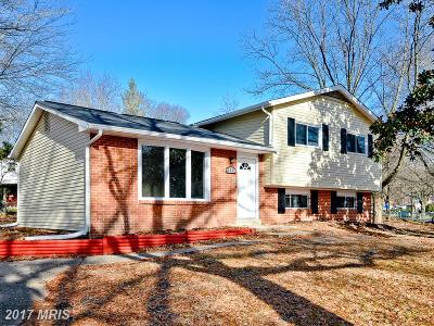 Suitland Single Family Home For Sale: 3728 Dianna Road