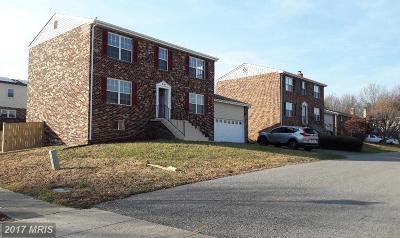 Clinton Single Family Home For Sale: 12102 Birchview Drive