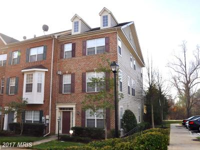 Bowie Rental For Rent: 12921 Gladys Retreat Circle #40