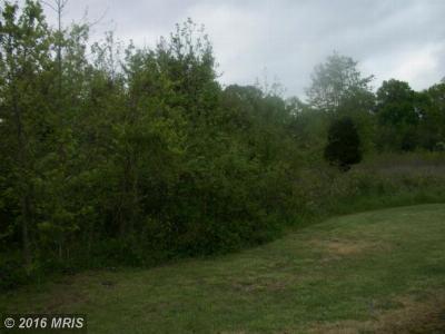 Brandywine Residential Lots & Land For Sale: 15108 Brandywine Road