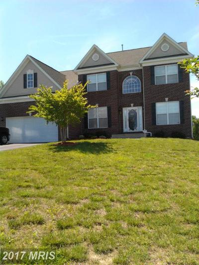 Upper Marlboro Single Family Home For Sale: 7007 Antock Place