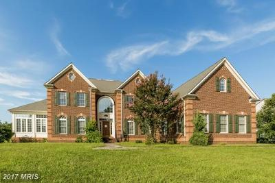 Bowie Single Family Home For Sale: 14000 Dawn Whistle Way