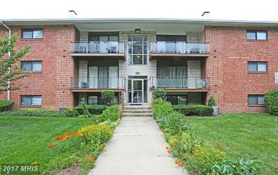 Beltsville Rental For Rent: 10401 46th Avenue