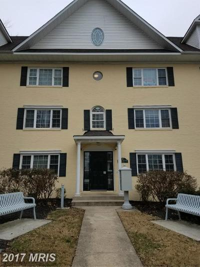College Park Rental For Rent: 7302 Yale Avenue #200