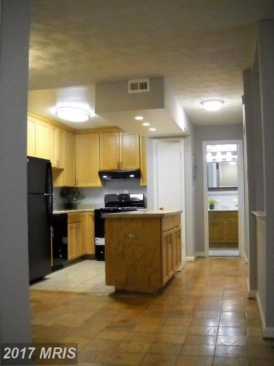 College Park Rental For Rent: 6000 Westchester Park Drive #T1