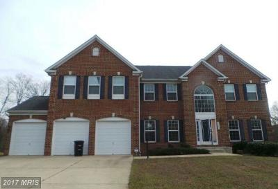 Prince Georges Single Family Home For Sale: 13609 Wood Ember Drive