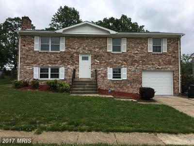 Temple Hills Single Family Home For Sale: 4114 Carozza Court
