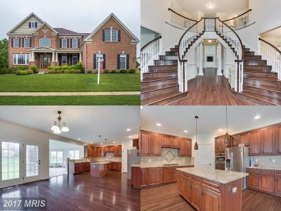 Upper Marlboro Single Family Home For Sale: 11400 Dappled Grey Way