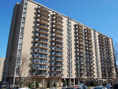 College Park Rental For Rent: 6100 Westchester Park Drive #T-4