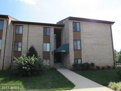 Greenbelt Rental For Rent: 6916 Hanover Parkway #2