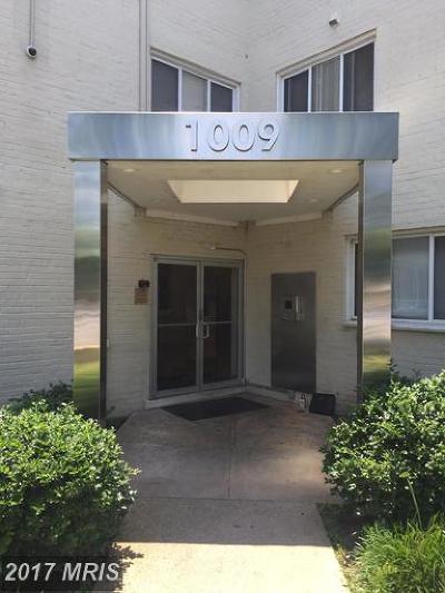 Hyattsville Rental For Rent: 1009 Chillum Road #110