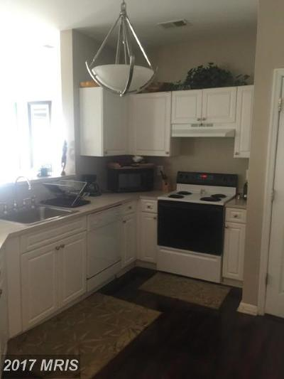 Suitland Rental For Rent: 3132 Bellamy Way #5