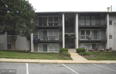 Temple Hills Rental For Rent: 3120 Brinkley Road #3304