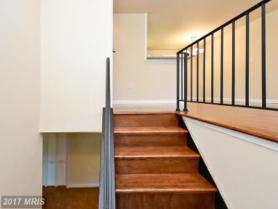 Laurel, Glenn Dale Single Family Home For Sale: 8507 Locust Grove Drive