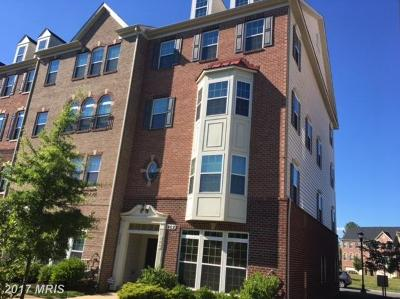 Bowie Rental For Rent: 902 Hall Station Drive #100
