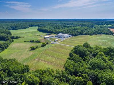 Montgomery, Prince Georges, Anne Arundel, dc, Charles Farm For Sale: 16900 Claggett Landing Road