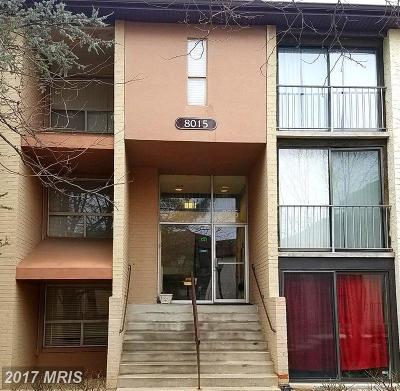 Greenbelt Rental For Rent: 8015 Mandan Road #542