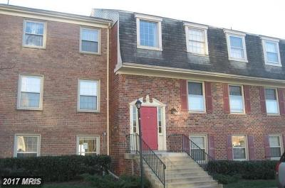 College Park Rental For Rent: 6036 Westchester Park Drive #101