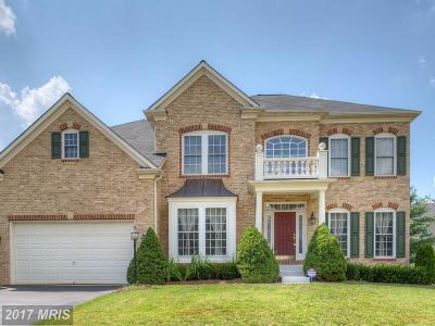 Gainesville Single Family Home For Sale: 14512 Penderlea Court